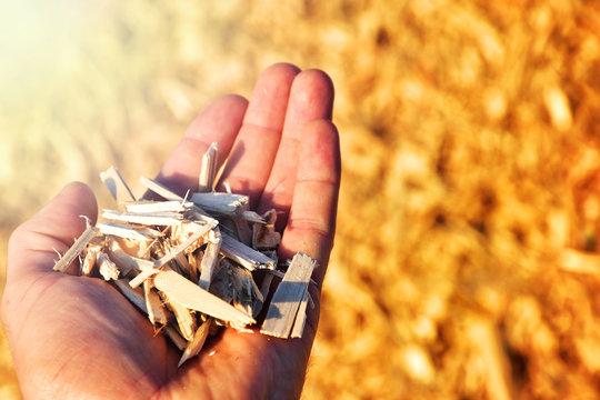 wood chips in hand renewable heating source fuel