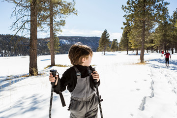 A six year old boy on snow shoes among trees. ,Valle Caldrea