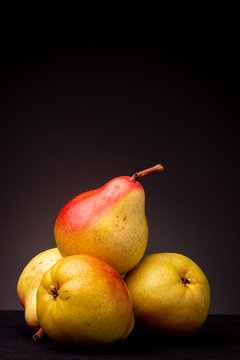 Vertical frame of vibrant colourful yellow red Seckel pear resting slanted on other pears on a black surface contrasted against a dark grey background