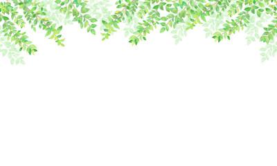Fototapeta 手描き 水彩 新緑の背景イラスト04