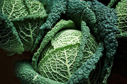 Raw green cabbage texture. Organic savoy cabbage background. Vegan and vegetarian diet concept
