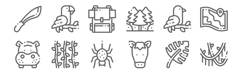 set of 12 jungle icons. outline thin line icons such as vines, horse, vines, bird, backpack, parrot