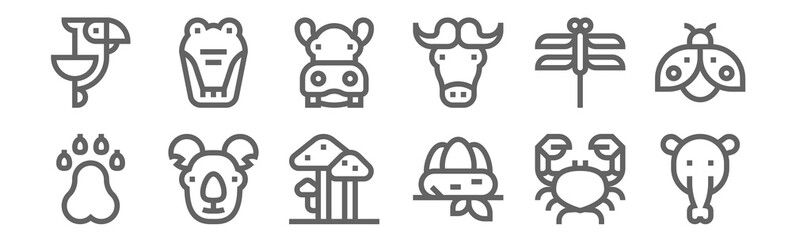 set of 12 wildlife icons. outline thin line icons such as anteaters, nest, koala, dragonfly, hippo, crocodile Fotomurales