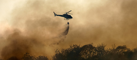 Poster Helicopter Helicopter dumping water on forest fire