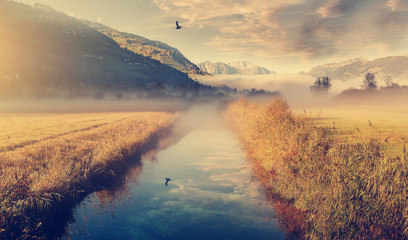 Fotomurales - Wonderful picturesque Scene. Incredible Misty morning over Alpine valley. Amazing Nature Landscape, Beautiful View of spring meadow with calm river, fresh grass and colorful sky. Picture of wild area.