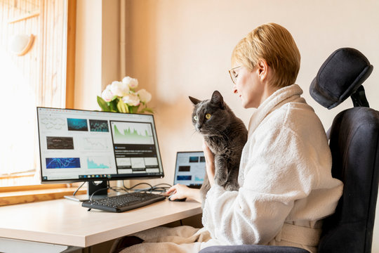 Office moving to flat. Cat sitting with his master at working place with IT equipment at home. He is disturbing woman while her work on computer. Quarantine isolation while epidemic.