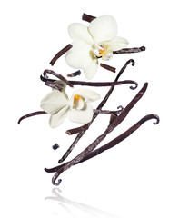 Dried vanilla sticks with flowers in the air on a white background