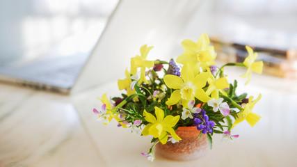 Photo sur Plexiglas Narcisse 黄色のスイセンとピンクのビオラと紫色のムスカリのアレンジ
