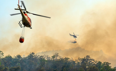 Zelfklevend Fotobehang Helicopter Helicopter dumping water on forest fire
