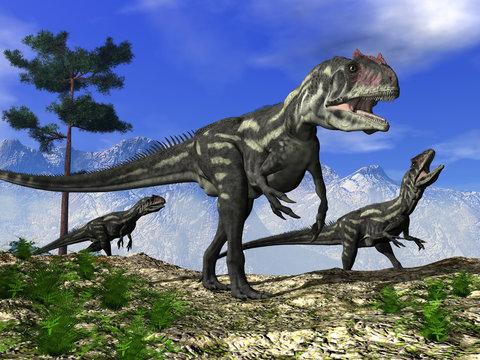 Three allosaurus dinosaurs walking on the hill - 3D render