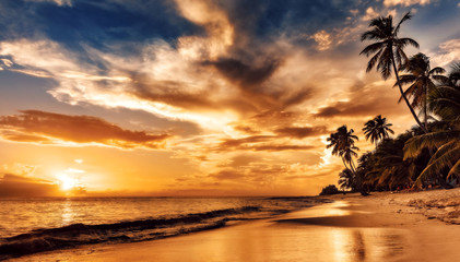 Sunset on the beach. Paradise beach. Tropical paradise, white sand, beach, palm trees and clear water.