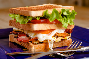 Club sandwich with fried egg
