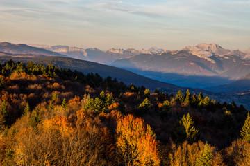 Fotorollo Rosa dunkel Alpes Françaises