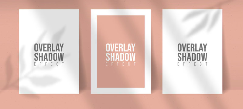 Shadow Overlay Plant Vector Mockup thre A4 Paper sheets. Shadows overlay leaf and window light effects. Modern minimalist style. For presentation Flyer, Poster, blank, logo, invitation.