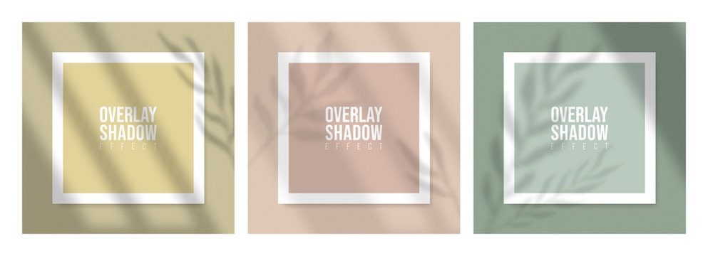 Square Paper Mockup with realistic shadows overlays leaves on beige background. Vector Shadow Of A Tropical Plant. Template Flyer, Poster, blank, social media post, logo template in a trendy style