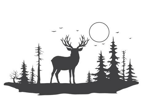 Deer in forest