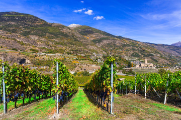 Castles and vineyards of Valle d'Aosta. famous wine region of northern Italy. Castello Reale di Sarre, Italy