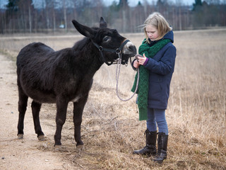 Photo sur Plexiglas Ane Donkey is the girl's favorite animal. A child with a donkey on a pasture
