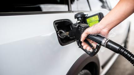 Fototapeta Tankowanie samochodu - dłoń w rękawiczce