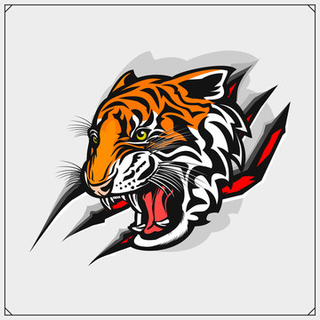 The emblem with tiger for a sport team. Print design for t-shirt.