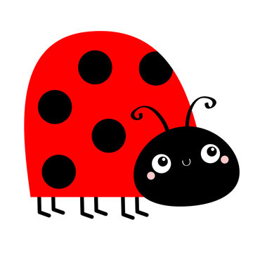 Lady bug ladybird insect icon. Side view. Cute cartoon kawaii funny baby character. Big eyes. Red black color dot. Love greeting card. Happy Valentines Day. Flat design. White background.