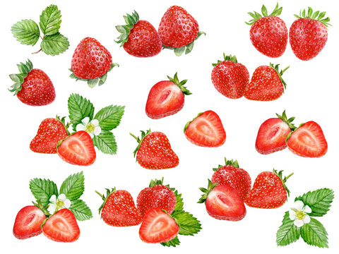 Strawberry set watercolor isolated on white background