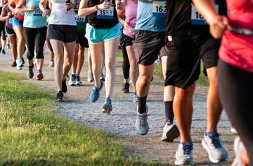 Legs of runners on a dirt path running a 5K race Fotomurales