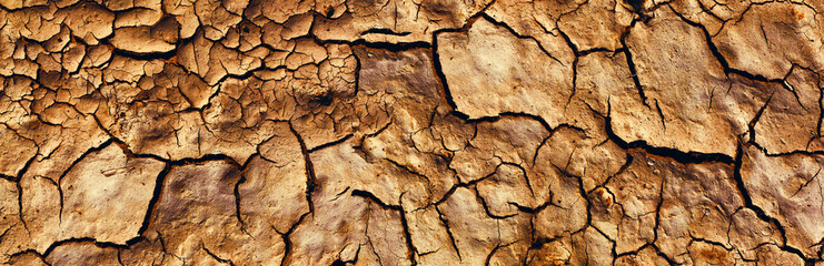 Background and texture of cracked dry earth. Panorama.