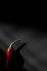 Canvas Prints Hot chili peppers red hot chili pepper in shadow on black backdrop