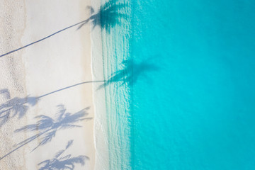 Wall Mural - Aerial beach landscape. Minimalist beach view from drone or airplane, palm shadows in white sand near blue sea with beautiful ripples and waves. Perfect summer beach landscape banner. Exotic blue sea