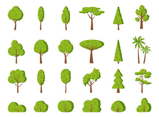 Summer tree and bush, flat cartoon icon set. Different shape simple spring forest park, oak, garden, fir, palm, symbol. Season green leaf, eco organic plant sign. Isolated on white vector illustration Wall mural