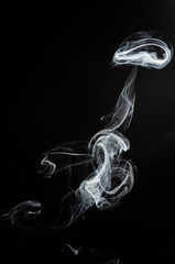 Obraz Biały dym na czarnym tle  - fototapety do salonu