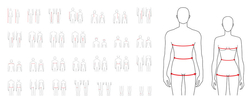 Women and men measurements fashion set.