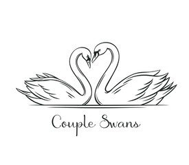Couple swans outline.