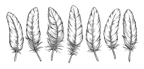 Sketch feathers set Fotomurales