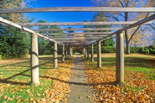 Tanglewood Music Center in Autumn, Lenox, Massachusetts