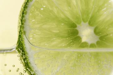 Lemon Slice on sparkling lemonade