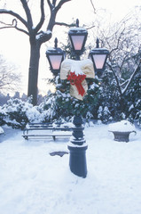 Wall Mural - Snow covered lampposts and Christmas Decor with fresh snow in Central Park, Manhattan, NY