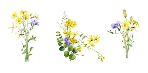 Watercolor bouquets of blue and yellow wild flowers Fotobehang