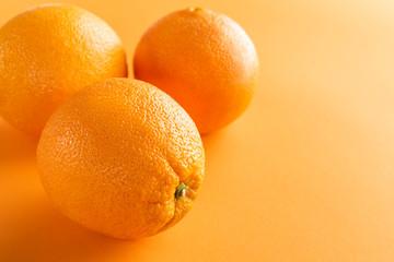 oranges on color paper background