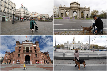 A combination picture of people with their dogs during partial lockdown in Madrid
