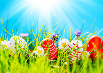 Easter eggs in green grass with flowers, blue sky and sun