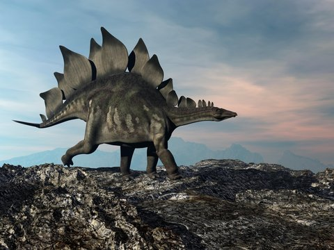 Stegosaurus walking on the hill by sunset - 3D render