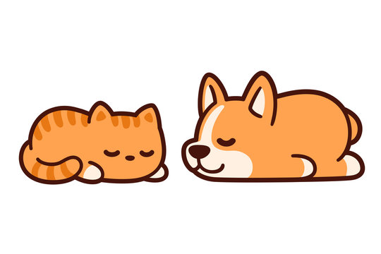 Cute sleeping cat and dog