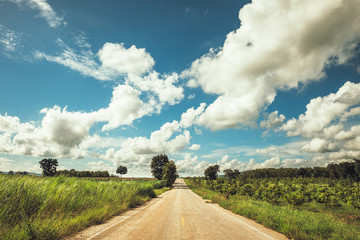 Road Through the Farmland