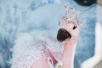 Papiers peints Autruche Peluche pour fillette princesse autruche