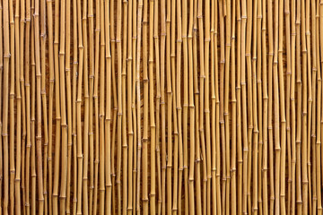 Bamboo texture. Wooden background.