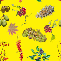 Wild berries and nuts. Seamless pattern.