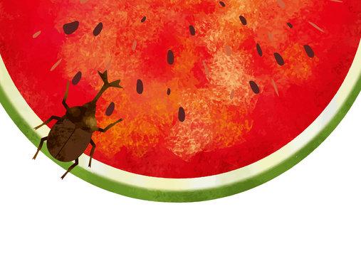 夏:虫 西瓜 スイカ割り 自然 真夏 夏休み 思い出 果物 水彩 手描き フルーツ 種 果汁