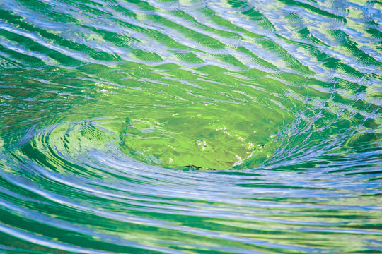 Close up of Water vortex forming on the surface of a river